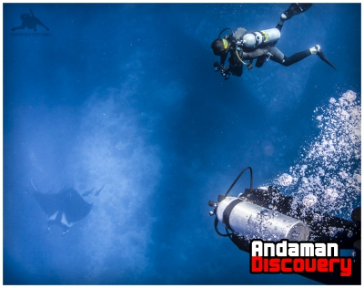 Dive & snorkel in Thailand